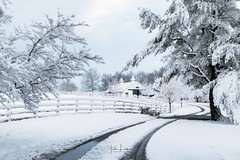 """Image by the_lowe_life (jwlowe) and image name """"Winter Wonderland"""" photo  about Merry Christmas and a Happy New Year!"""
