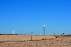 Wind turbines outnumber cows on this Texas farm