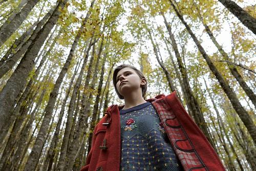 映画『シシリアン・ゴースト・ストーリー』©2017 INDIGO FILM CRISTALDI PICS MACT PRODUCTIONS JPG FILMS VENTURA FILM