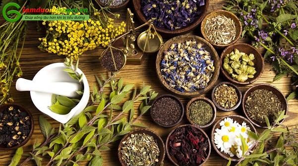 Trong điều trị bệnh tiểu đường nói riêng, việc sử dụng thảo dược bản địa hay còn gọi là thuốc nam giữ một vai trò ngày càng quan trọng.
