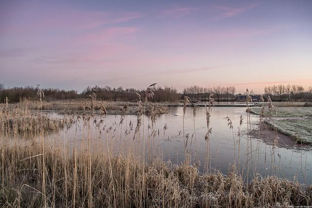 Leusden, The Netherlands, Nikon D7500, AF-S DX VR Zoom-Nikkor 18-55mm f/3.5-5.6G