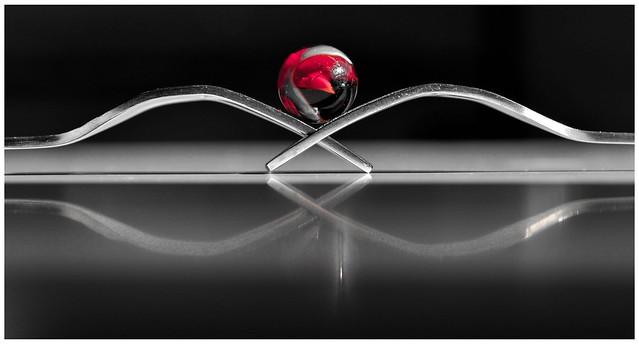 Cuando las almas se tienen que encontrar, el destino acerca los mundos, borra la distancia, una los caminos y desafía a lo imposible.