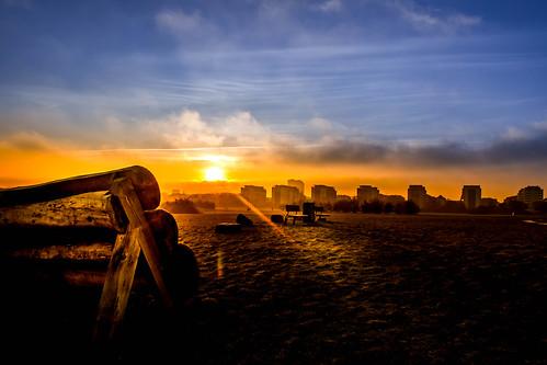 silhuetter ribban sweden silhouettes ribersborg malmö sunset sky skånelän sverige se