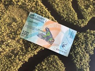 Madagascar frog banknote