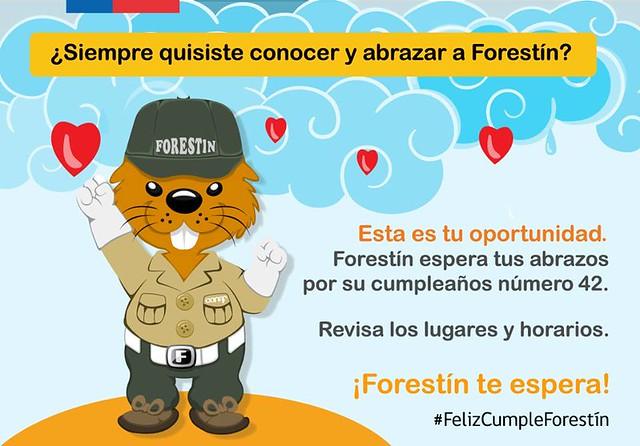 Forestin graphic