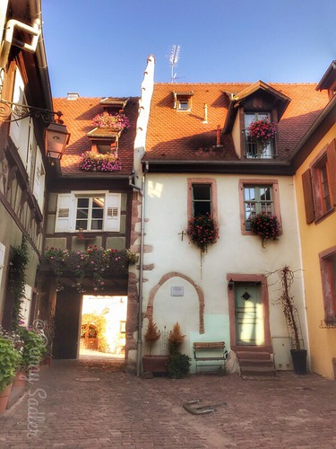 The Court of the winemakers. The History and Architecture of Riquewihr in Photos
