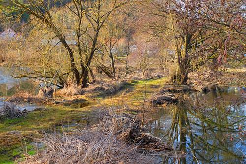 At the river Naab -