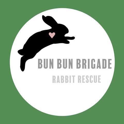 Bun Bun Brigade Rabbit Rescue Elizabethtown KY ��