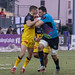 Challenge Cup 2018-19- Zebre vs Stade Rochelais-191.jpg by stede64