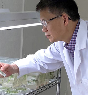 Yi Li in lab