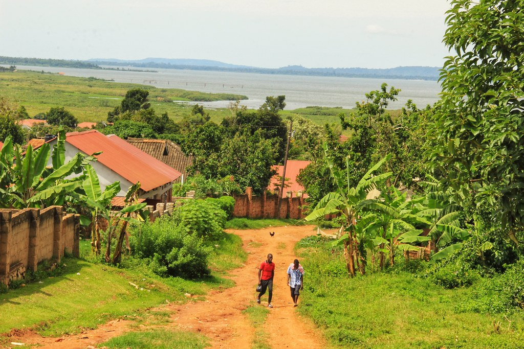 Lush green landscapes of Entebbe, Uganda