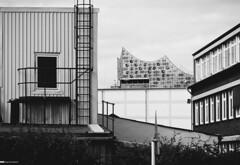 Alternativer Blick auf die Elbphilharmonie 05