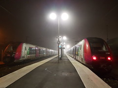 Le Francilien dans le brouillard hivernal - Gare de Coulommiers - Photo of Coulommiers
