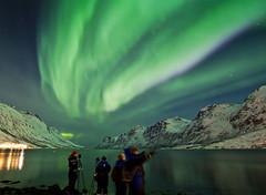 Contemplant la aurora / In awe beneath the Lights