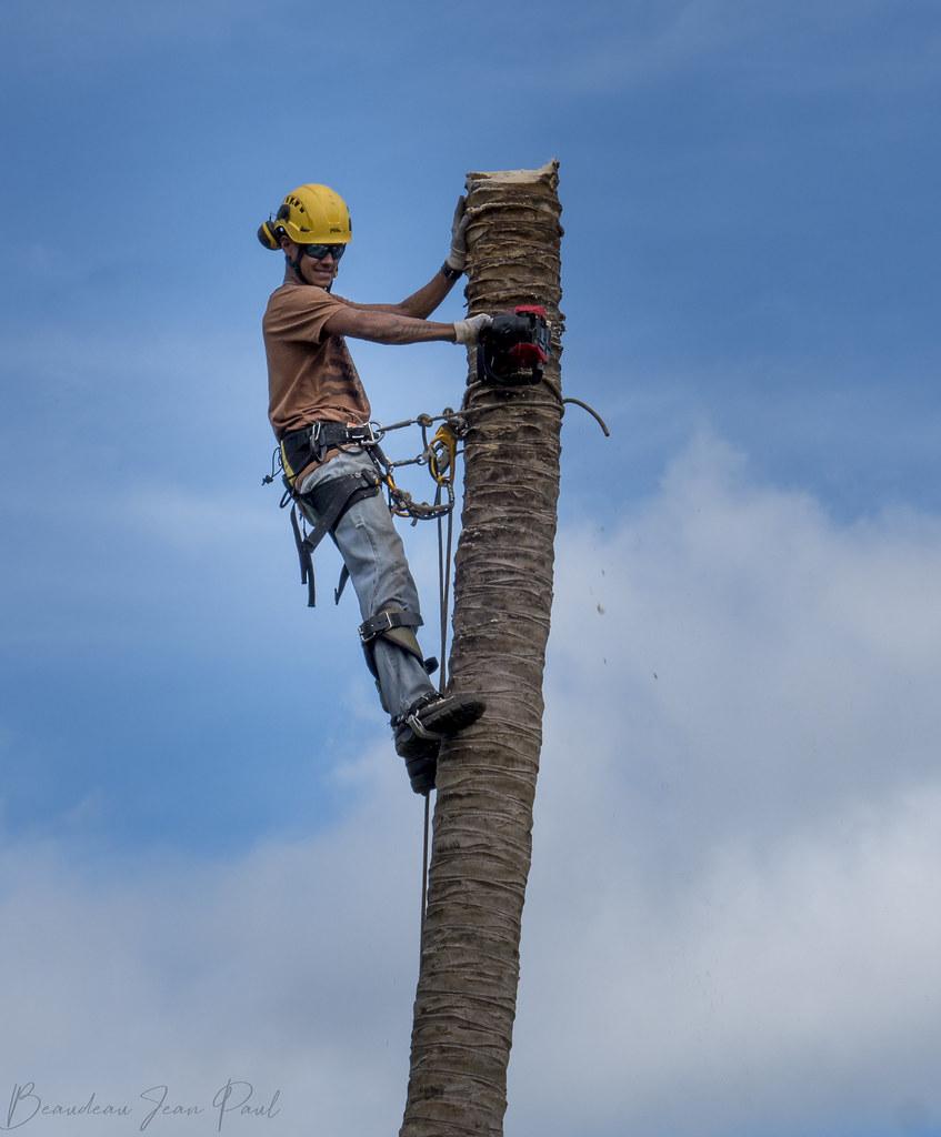 le travail des acrobates 33564314648_c7a5d0985a_b
