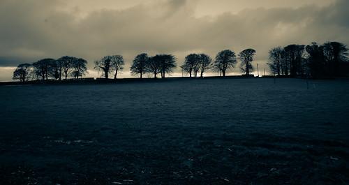 Irish Landscape - County Louth Ireland