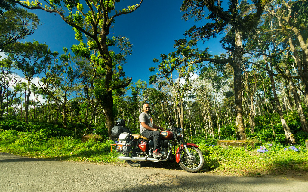 Through the rainforests of Kerala