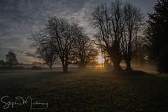 Croxteth Park Sun-up