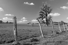 Un morceau de campagne - a piece of countryside - Photo of Neuvelle-lès-Voisey