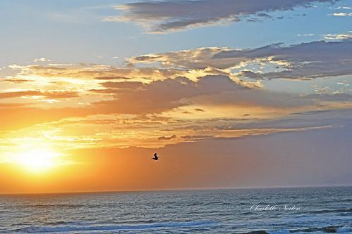 Sunrise South Padre Island, Texas