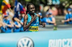 RunCzech představuje favority květnového Volkswagen Maratonu