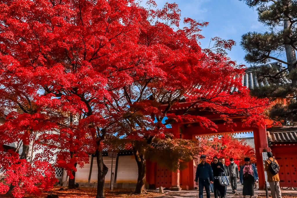 kyoto-temples-alexisjetsets-8