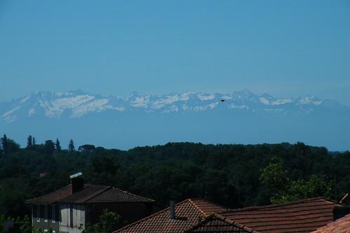 20090528 092 1107 Jakobus Pyrenäen Wald Schnee