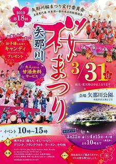 2019_矢那川桜まつり