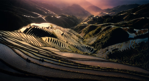 The rice terraces in Long Ji