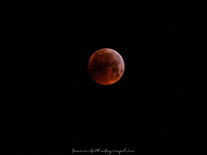 La lune sous toutes ses formes!! 31886804257_22f996014d_c