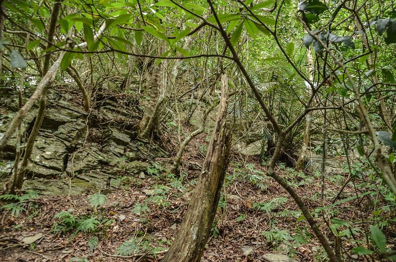 法範山南峰岩石峭壁地形 (2)