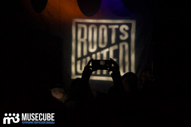 Roots_021