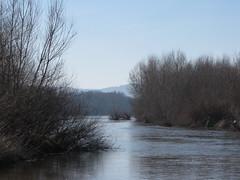 IMG_5419 - Photo of Saint-Martin-sur-Nohain