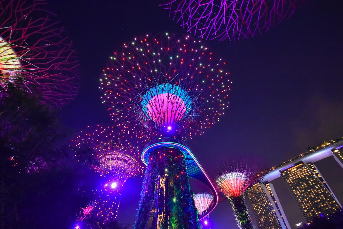 Singapore-details-(47)
