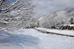 Japan January February 2019