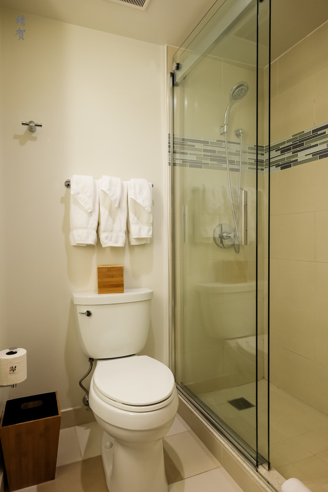 Toilet and shower cubicle