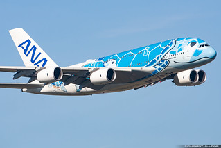 All Nippon Airways ANA Airbus A380-841 cn 262 F-WWSH // JA381A