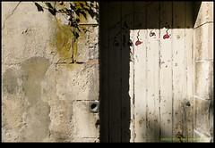 180925-9259-XM1.JPG - Photo of Saint-Ouen-d'Aunis