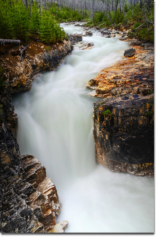 Marble Canyon, Kootenay National Park 6