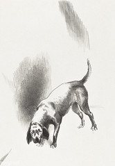 The Dog by Odilon Redon