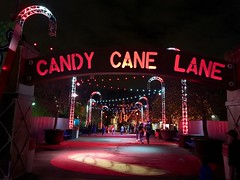Entering the walkway of Candy Cane Lane