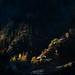 第一道曙光Light Of Dawn II Pakistan  在我看来,某个东西你不把它拍下来就不能说你见过。
