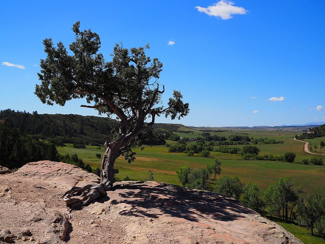 Castlewood Canyon Lone Tree