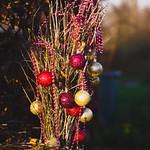 Garden decoration bokeh - 30. Dezember 2018