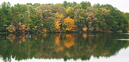 Dekalb County Lake #4_edited-1.psd
