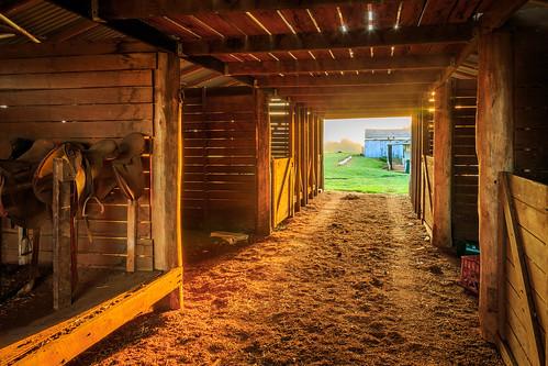 Sunlight peeping through the Barn