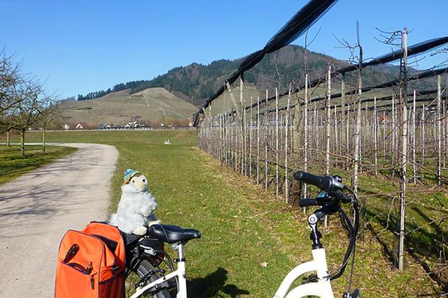 März 2019: Karla Kunstwadl in Oberkirch (Schwarzwald): Fasnetstreiben und Grimmelshausen ... Foto: Margit Hahn