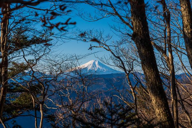 木々間より富士山