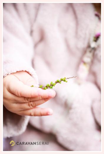 庭の草花を手にした女の子の手元