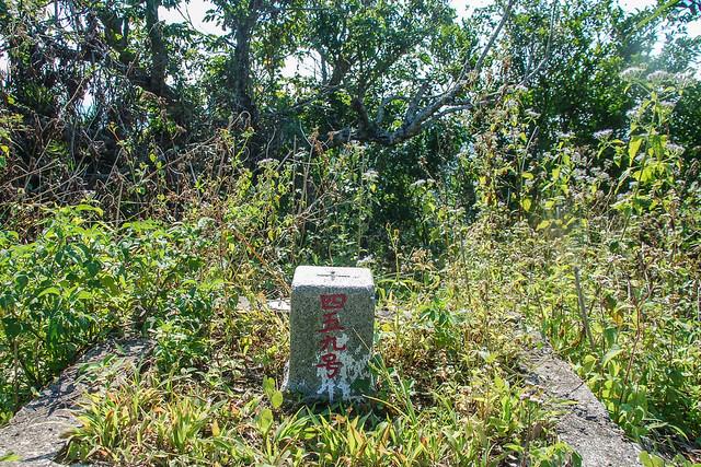 爐芝潭山三等三角點(# 459 Elev. 263 m) 4